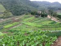 Perspectivas sobre o curso de Agronomia.